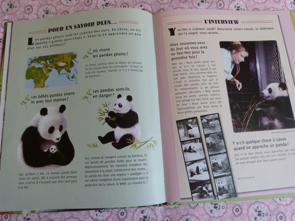 yen yen le panda 007