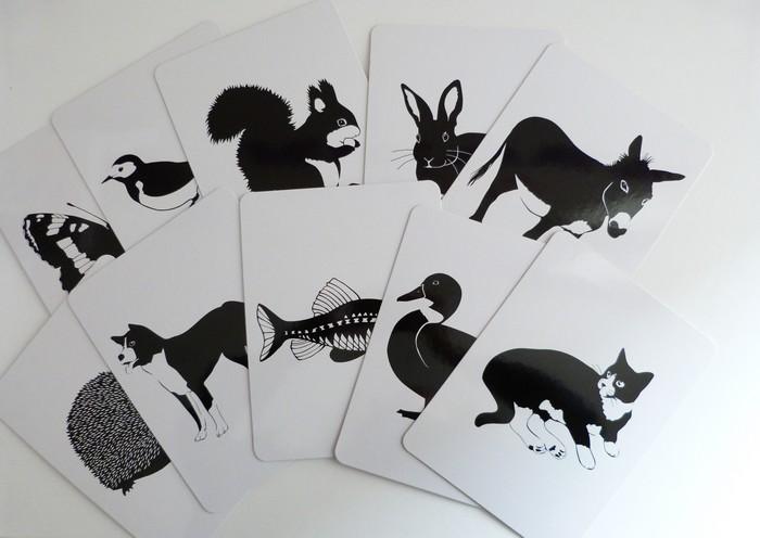 animaux noir et blanc